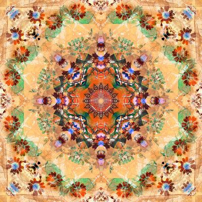 Mandala of Flower Photographies