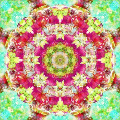 Mandala Ornament from Flower Photographs