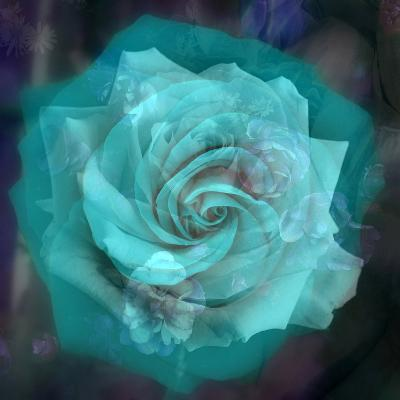 Composing of a White Rose Layered with Emerald and Blossoms