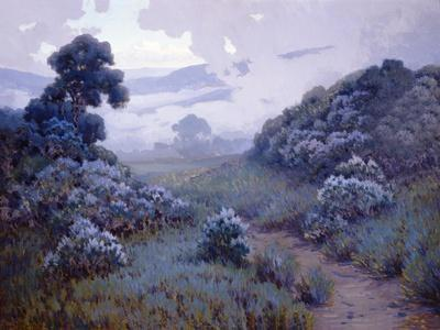 Landscape with Lupines