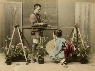 Japanese Flower Seller Stall