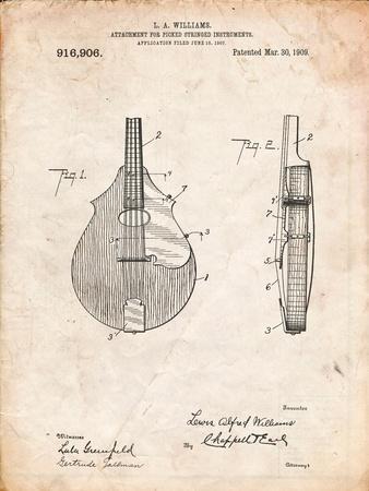 Mandolin Pick Guard Patent