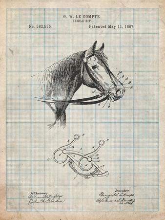 Horse Bridle Bit