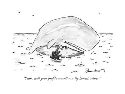 """""""Yeah, well your profile wasn't exactly honest, either."""" - New Yorker Cartoon"""