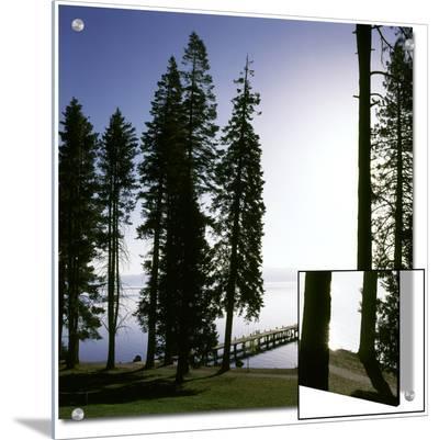 Dock at Ehrman Mansion, Sugar Pine Point State Park, Lake Tahoe, California, USA