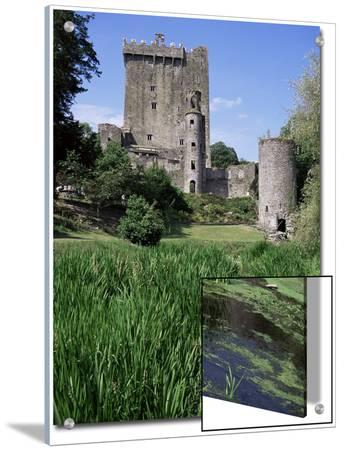 Blarney Castle, County Cork, Munster, Eire (Republic of Ireland)