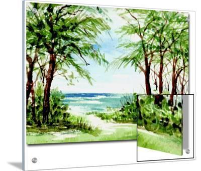 Australian Pine and Seagrape Line Path to Beach