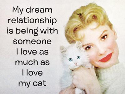 My Dream Relationship Is Being with Someone I Love as Much as I Love My Cat