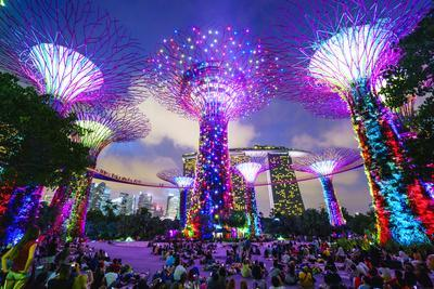 Supertree Grove in the Gardens by the Bay, a Futuristic Botanical Gardens and Park
