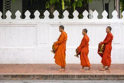 Buddhist Novice Monks Line Up to Receive Alms (Tak Bat) at Dawn, Luang Prabang