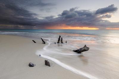 Caribbean Sunset Frames Tree Trunks on Ffryes Beach, Antigua, Antigua and Barbuda