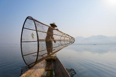 A Basket Fisherman on Inle Lake Prepares to Plunge His Cone Shaped Net, Shan State, Myanmar (Burma)