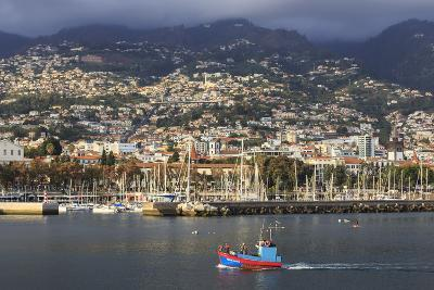 Funchal Town from Sea with Fishing Boat, Lit by Evening Sun with Foggy Mountain Backdrop, Funchal