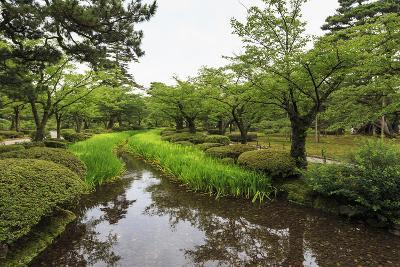 Stream with Lush Greenery and Reflections, Kenrokuen