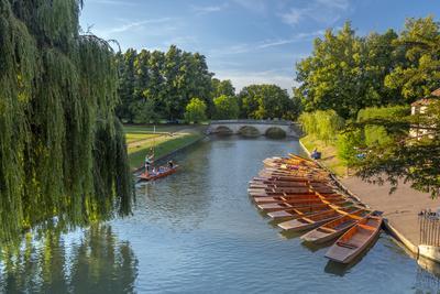 Punts on the Backs, River Cam, Cambridge, Cambridgeshire, England, United Kingdom, Europe
