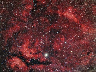 Sadr Region in the Constellation Cygnus