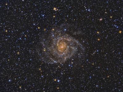 Ic 342 Intermediate Spiral Galaxy