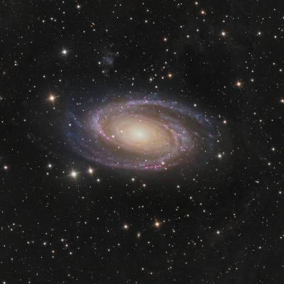 Messier 81 Spiral Galaxy in the Constellation Ursa Major