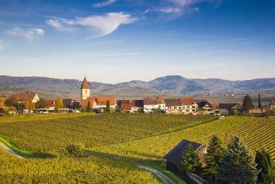 Germany, Baden-Wurttemburg, Burkheim, Kaiserstuhl Area, Vineyards Elevated Village View