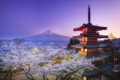 Japan, Yamanashi Prefecture, Fuji-Yoshida, Chureito Pagoda, Mt Fuji and Cherry Blossoms