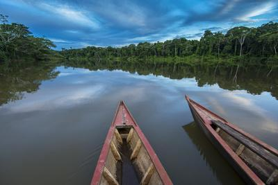 South America, Peru, Amazonia, Manu National Park, UNESCO World Heritage