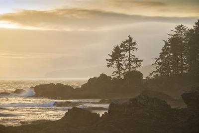Canada, British Columbia, Vancouver Island, Port Renfrew, Juan Defuca Provincal Park