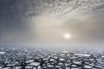Mist on the Pack Ice, in the High Arctic Ocean, North of Spitsbergen, Svalbard Islands, Norway