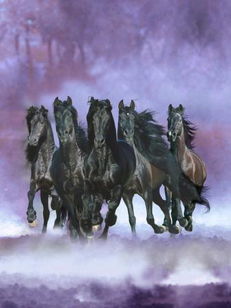 Dream Horses 057