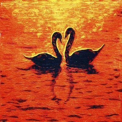 Swan LIV