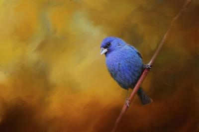 Blue Bunting in Autumn