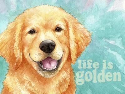 Life Is Golden Retriever