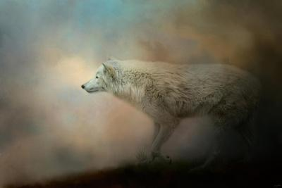 Journey of the Timber Wolf