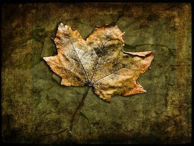 Metallic Leaf 1