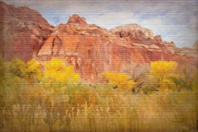 Southwest Splendor