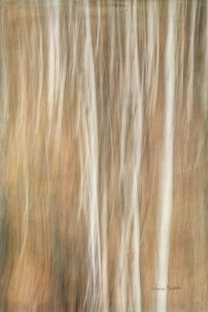 Ethereal Thicket
