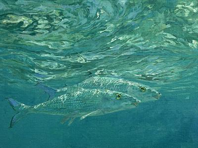 A Pair of Glittering Bonefish Prowl Just Below the Surface