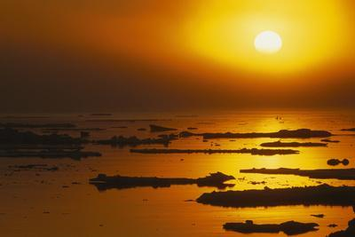 Ice Floating on the Sea at Svalbard During Sunset