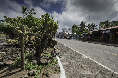 Downtown Puerto Ayora, the Largest Town in the Galapagos Islands