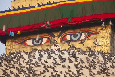 Pigeons on Boudhanath Stupa in Kathmandu, Nepal