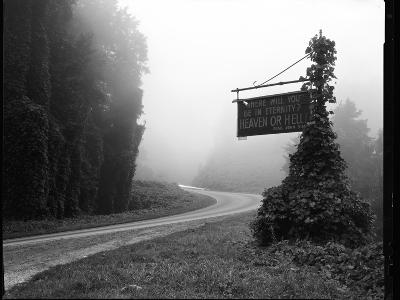 A Sign Covered in Kudzu on Highway 74 Near Bryson City, North Carolina