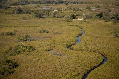 Aerial View, Okavango Delta, Botswana