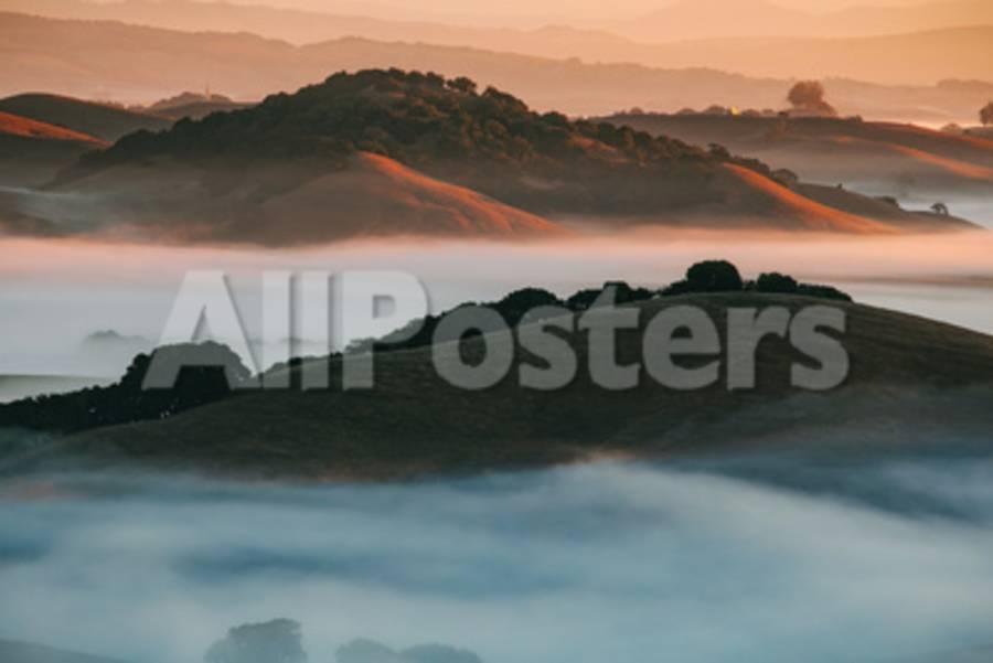 Warm Light and Cool Fog, Morning in Petaluma California