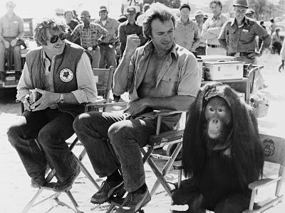 Clint Eastwood, Every Which Way But Loose, 1978
