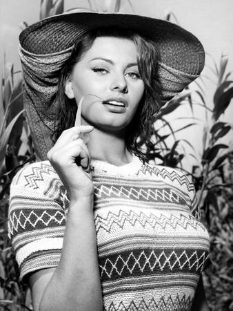 Sophia Loren, the River Girl, 1955 (La Donna Del Fiume)