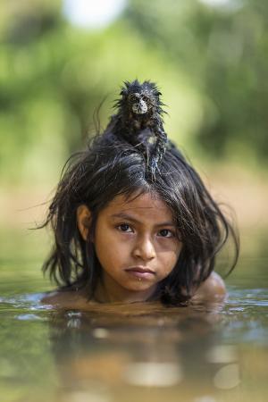 A Pet Saddleback Tamarin Hangs on Tight to a Matsigenka Girl as She Swims in the Yomibato River
