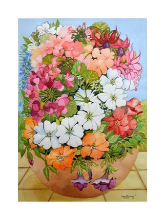 Petunias, Geraniums and Fuchsias