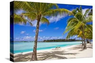 Palm Trees, Lounge Chairs, and White Sand on a Tropical Beach