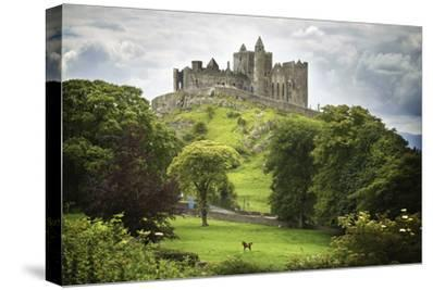 Rock of Cashel; Cashel County Tipperary Ireland