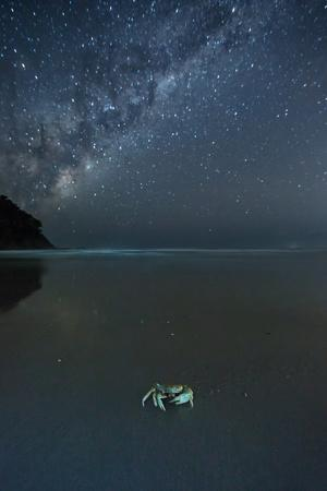 The Milky Way Above a Crab on a Beach