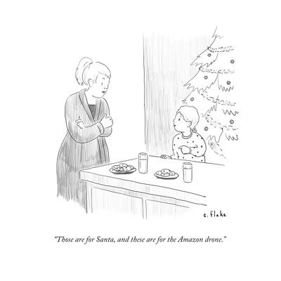 """""""Those are for Santa, and these are for the Amazon drone."""" - Cartoon"""